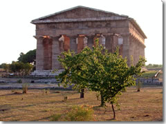 The Temple of Neptune at Paestum.