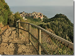 The Cinque Terre path from Vernazza into Corniglia