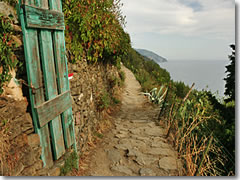 Finding the Cinque Terre trail (this is the stretch between Vernazza and Corniglia) is easy; just follow the white-and-red blazes.