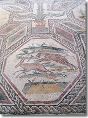Mosaics in the Villa Romana of Desezano del Garda
