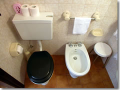 Left: toilet. Right: bidet. Do not mix them up.