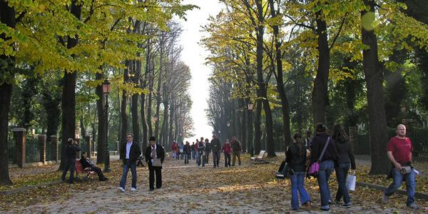 Giardini pubblici park giardini napoleonici in venice italy for Giardini a venise